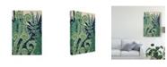 "Trademark Global Naomi Mccavitt Fiddlehead Waltz I Canvas Art - 20"" x 25"""