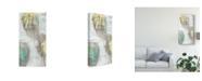 "Trademark Global Jennifer Goldberger Citron and Teal Orbs I Canvas Art - 20"" x 25"""
