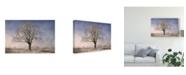 "Trademark Global Philippe Sainte-Laudy The Tree Fairy Tale Canvas Art - 37"" x 49"""