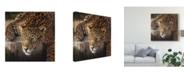 "Trademark Global Pip Mcgarry On the Rocks Leopard Canvas Art - 15"" x 20"""