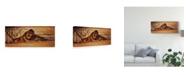 "Trademark Global Pip Mcgarry Shady Characters Canvas Art - 20"" x 25"""