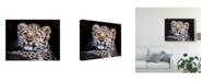 "Trademark Global Pip Mcgarry Amur Leopard Cub Canvas Art - 20"" x 25"""