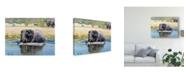 "Trademark Global Pip Mcgarry Elephant, Okavango Delta Canvas Art - 37"" x 49"""