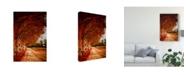 "Trademark Global Pixie Pics Autumn Paths Canvas Art - 37"" x 49"""