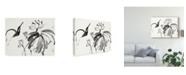 "Trademark Global Nan Rae Lotus Study I Canvas Art - 15"" x 20"""