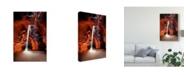"Trademark Global David Drost Sun Shining Through Canyon II Canvas Art - 20"" x 25"""