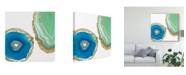 """Trademark Global Jennifer Goldberger Gem Stones III Canvas Art - 15"""" x 20"""""""