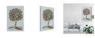 "Trademark Global Vision Studio Antique Tree in Sepia I Canvas Art - 15"" x 20"""