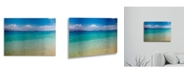 "Trademark Global Pierre Leclerc Blue Beach Maui Floating Brushed Aluminum Art - 22"" x 25"""