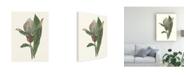 """Trademark Global Melissa Wang Orchid Display III Canvas Art - 37"""" x 49"""""""