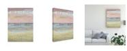 "Trademark Global Jennifer Goldberger Dusted Horizon II Canvas Art - 37"" x 49"""