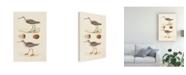 "Trademark Global Morris Sandpipers and Eggs II Canvas Art - 20"" x 25"""