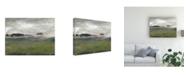 "Trademark Global Sharon Gordon Along the Island I Canvas Art - 37"" x 49"""