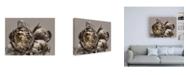 Trademark Global Design Fabrikken Baroque 4 Fabrikken Canvas Art Collection