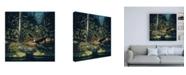 "Trademark Global John Van Straalen Forest Sentinel Canvas Art - 19.5"" x 26"""