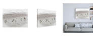 "Trademark Global Brooke T. Ryan Sandpipers Canvas Art - 15.5"" x 21"""