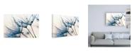 "Trademark Global PhotoINC Studio Mystic Blue Canvas Art - 19.5"" x 26"""