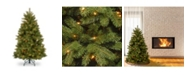 National Tree Company 4.5 ft. Newberry® Spruce Tree with Clear Lights