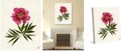 "Creative Gallery Dried Itoh Peonyon Paper-pattern 24"" x 20"" Canvas Wall Art Print"