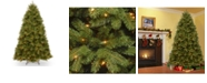 National Tree Company National Tree 6' Feel Real  Newberry ™  Spruce Hinged Tree with 600 Clear Lights