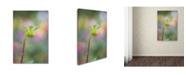 "Trademark Global Cora Niele 'Dahlia Bud' Canvas Art - 32"" x 22"" x 2"""