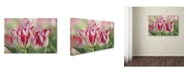 "Trademark Global Cora Niele 'Rembrandt Silver Standard Tulip' Canvas Art - 19"" x 12"" x 2"""