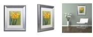 "Trademark Global Cora Niele 'Rembrandt Tulip' Matted Framed Art - 14"" x 11"" x 0.5"""