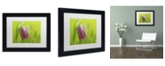 "Trademark Global Cora Niele 'Snake's Head Fritillary Flower' Matted Framed Art - 11"" x 14"" x 0.5"""