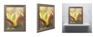 """Trademark Global Cora Niele 'Tulip Tinka' Ornate Framed Art - 14"""" x 11"""" x 0.5"""""""