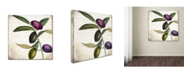 """Trademark Global Color Bakery 'Olive Branch II' Canvas Art - 35"""" x 2"""" x 35"""""""