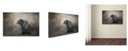 "Trademark Global Jai Johnson 'Braving The Storm' Canvas Art - 24"" x 16"" x 2"""