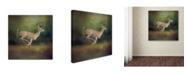 "Trademark Global Jai Johnson 'Buck On The Run' Canvas Art - 18"" x 18"" x 2"""