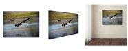 "Trademark Global Jai Johnson 'Canadian Goose In Flight 2' Canvas Art - 47"" x 35"" x 2"""