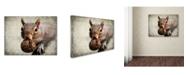 "Trademark Global Jai Johnson 'Gray Squirrel With Nut' Canvas Art - 47"" x 35"" x 2"""