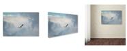 "Trademark Global Jai Johnson 'Gull Over Paris Landing' Canvas Art - 32"" x 22"" x 2"""