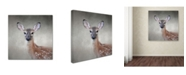 "Trademark Global Jai Johnson 'Little Miss Lashes White Tailed Fawn' Canvas Art - 24"" x 24"" x 2"""