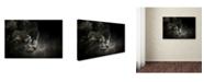 "Trademark Global Jai Johnson 'Out Of The Shadows Black Leopard' Canvas Art - 32"" x 22"" x 2"""