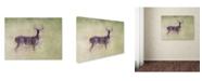 "Trademark Global Jai Johnson 'Stand Tall' Canvas Art - 32"" x 24"" x 2"""