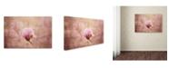 "Trademark Global Jai Johnson 'Pink Magnolia 2' Canvas Art - 24"" x 16"" x 2"""