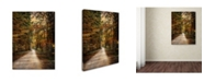 "Trademark Global Jai Johnson 'Autumn Forest 3' Canvas Art - 32"" x 24"" x 2"""