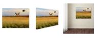 "Trademark Global Jai Johnson 'Hawk On The Run' Canvas Art - 47"" x 35"" x 2"""
