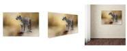 "Trademark Global Jai Johnson 'Snow Leopard' Canvas Art - 47"" x 30"" x 2"""