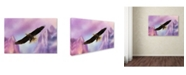 "Trademark Global Jai Johnson 'Over The Purple Mountains' Canvas Art - 47"" x 30"" x 2"""