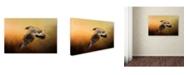 """Trademark Global Jai Johnson 'First Flight' Canvas Art - 24"""" x 16"""" x 2"""""""