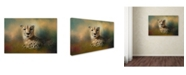 "Trademark Global Jai Johnson 'Cheetah Enjoying A Summer Day' Canvas Art - 24"" x 16"" x 2"""