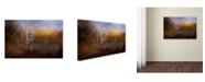 "Trademark Global Jai Johnson 'Let The Season Begin' Canvas Art - 24"" x 16"" x 2"""