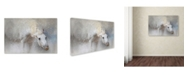 "Trademark Global Jai Johnson 'Snow Tickle' Canvas Art - 47"" x 30"" x 2"""