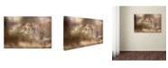 "Trademark Global Jai Johnson 'Lioness In Spring' Canvas Art - 19"" x 12"" x 2"""