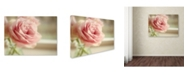 "Trademark Global Cora Niele 'Dreamy Rose' Canvas Art - 32"" x 24"" x 2"""