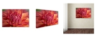 "Trademark Global Cora Niele 'Red Dahlia' Canvas Art - 24"" x 16"" x 2"""